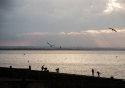 A still autumn day on Whitstable beach