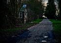 Osea Creepy Path